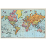 World map Poster 294342
