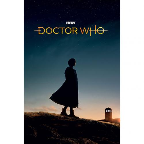 Doctor Who Poster New Dawn 295