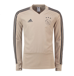 2018-2019 Ajax Adidas Training Top (Raw Gold)