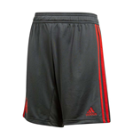 2018-2019 Bayern Munich Adidas Training Shorts (Utility Ivy)