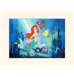 The Little Mermaid Print 299104