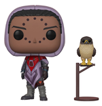 Destiny POP! Games Vinyl Figure Hawthorne w/ Hawk 9 cm