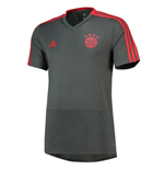 2018-2019 Bayern Munich Adidas Training Shirt (Utility Ivy)