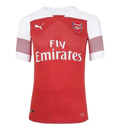 competitive price e50e5 1d01a 2018-2019 Arsenal Puma Home Authentic EvoKNIT Football Shirt