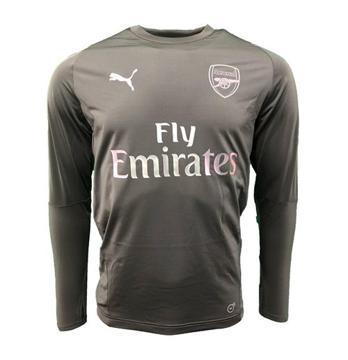 2018-2019 Arsenal Puma Training Sweat Top (Iron Gate)