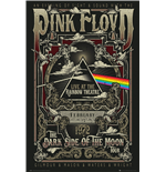 Pink Floyd Poster 317335