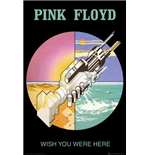 Pink Floyd Poster 317337
