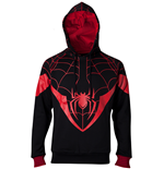 Spiderman Sweatshirt 331247