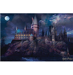 Harry Potter Poster 332664