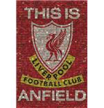 Liverpool This Is Anfield Mosaic Maxi Poster
