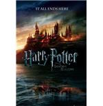 Harry Potter 7 Teaser Maxi Poster