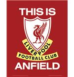 Liverpool This Is Anfield Mini Poster