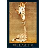 First Kiss Poster